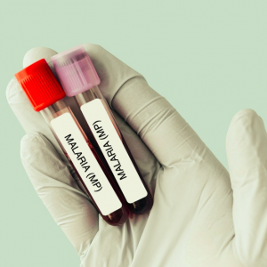 Malaria Parasite Test (MP)